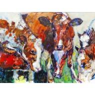 Bons Holstein Pinken